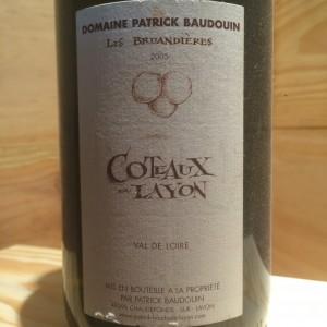 Côteaux du Layon Bruandières 2005